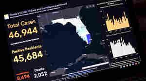 Making Sense Of Pandemic Stats