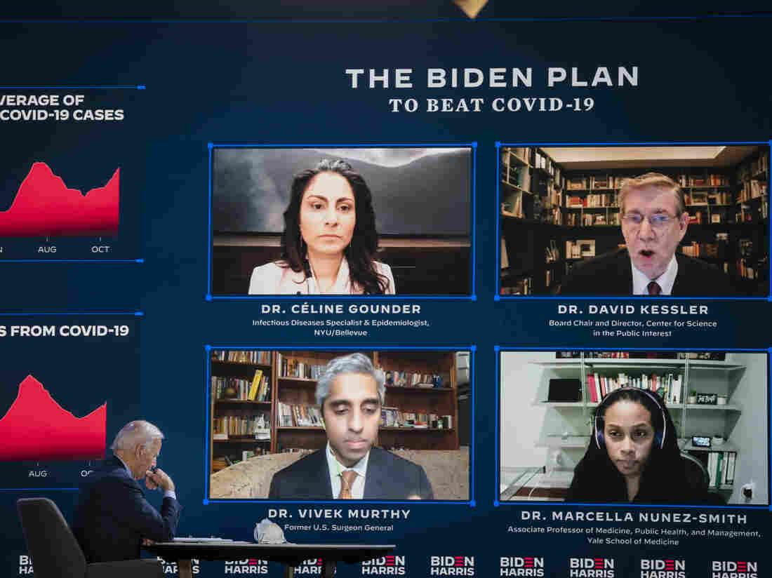 Biden picks former FDA commissioner to lead USA vaccine effort