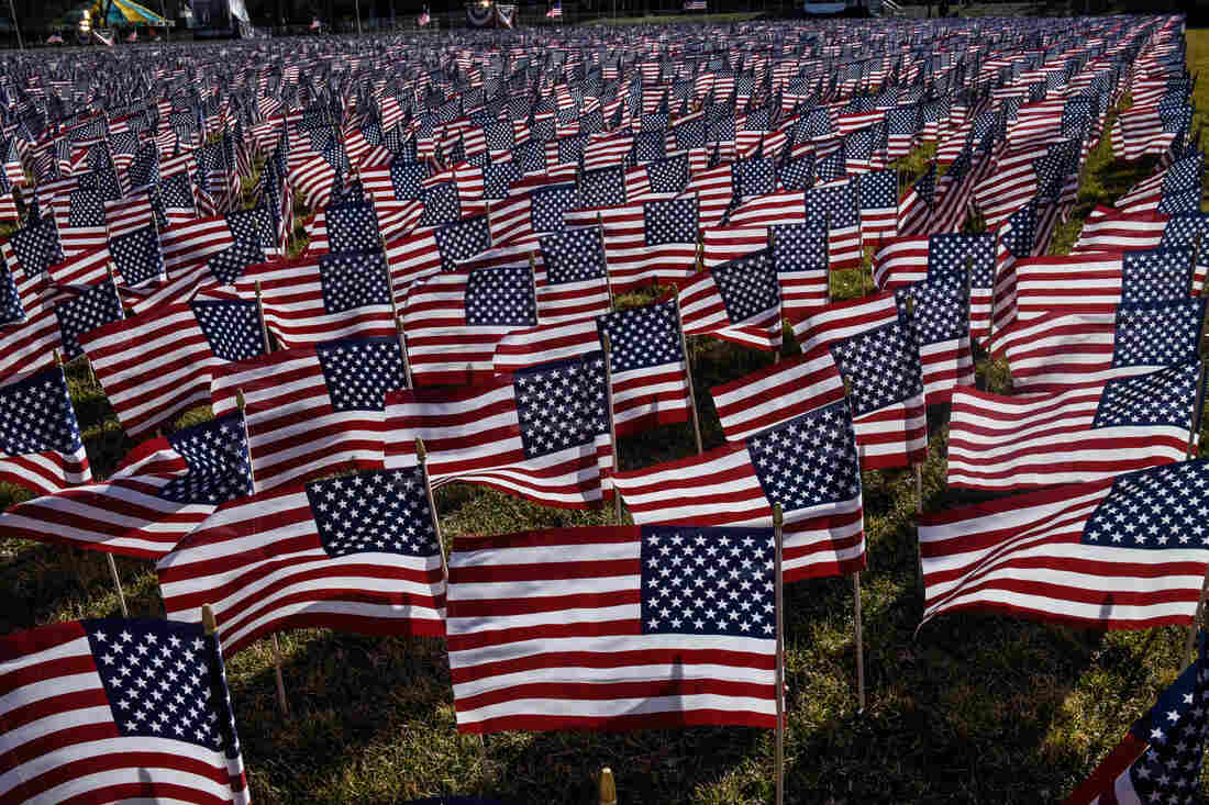 The National Mall is filled with decorative flags.