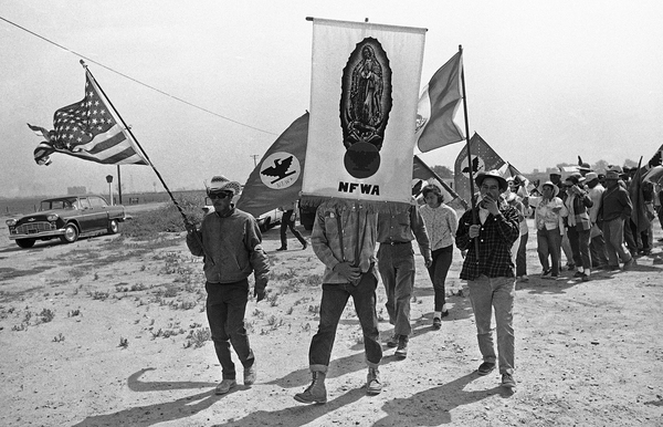 Striking farmworkers march 300 miles to the California state capital in 1966 to demand safer working conditions.