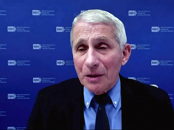 Dr. Anthony Fauci, director of the National Institute of Allergy and Infectious Diseases and chief medical adviser to the president, speaks earlier this week during a White House briefing on the COVID-19 pandemic.