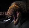 Niño de 8 años llama a NPR por falta de historias de dinosaurios
