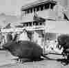 How Bubonic Plague Reshaped The Streets Of Mumbai