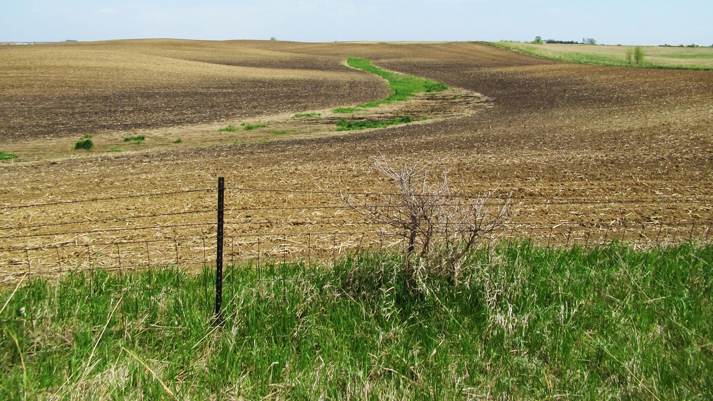 topsoil wide 68f6815ee353fcda4397cec4dff1deace5bfec68 jpg?s=1400