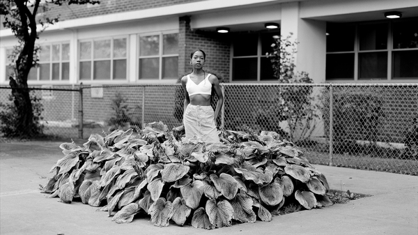 "Chanell Stone在公共住房项目中拍摄了很多地方,例如杂草丛生和绿地,通常包括自己在内。上方,""寻找特定的伊甸园"",布鲁克林,2019年。"