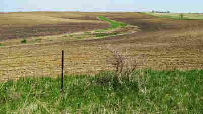 New Evidence Shows Fertile Soil Gone From Midwestern Farms