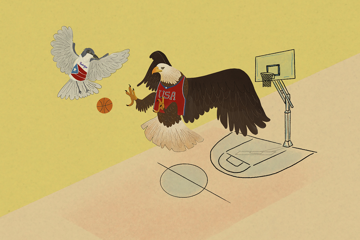 Two birds — a gray kingbird and an eagle — play basketball in the air.