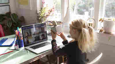 As Many Parents Fret Over Remote Learning, Some Find Their Kids Are Thriving