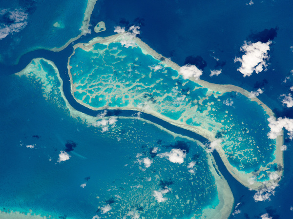 A portion of Australia's Great Barrier Reef photographed from the International Space Station. The Flinders Reef area of the Great Barrier Reef is one of 11 sites around the world where scientists are looking for decisive geological evidence of a new epoch called the anthropocene.