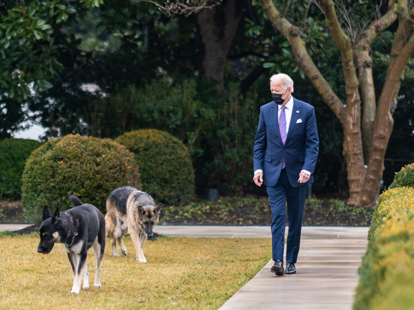 President Biden walks with his dogs Major and Champ in the Rose Garden of the White House.