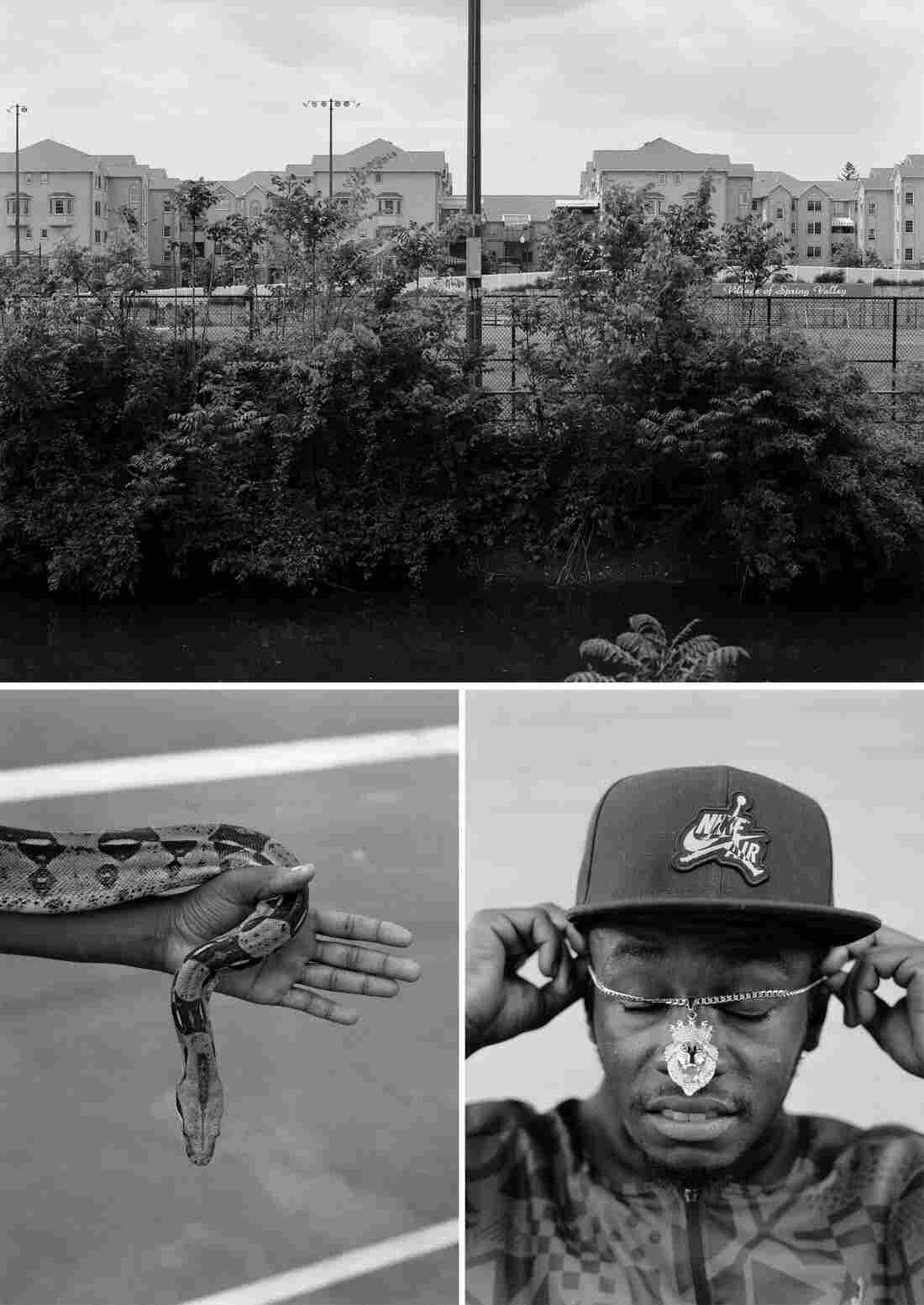 Trees in front of an apartment complex, a Black man puts a necklace on, a person holds a snake.