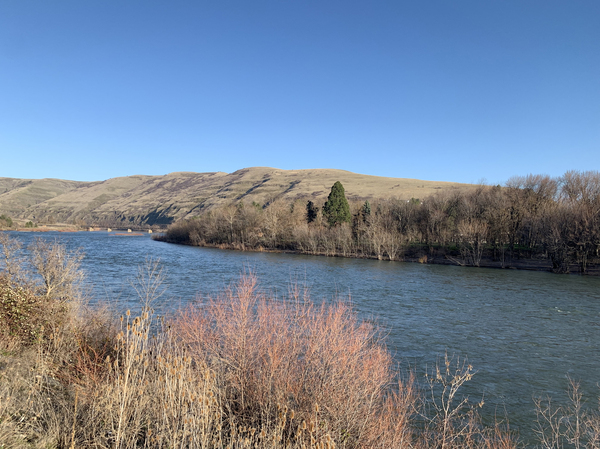 The Clearwater River and its tributaries lie within the traditional hunting, fishing and gathering areas of the Nez Perce Tribe. Salmon there are on the brink of extinction due to climate change and dams downstream.