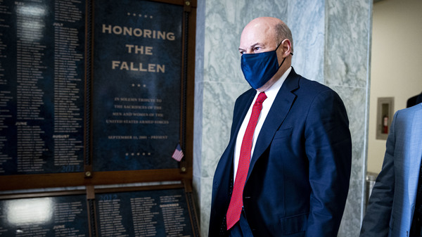 Postmaster General Louis DeJoy, pictured last month on Capitol Hill, has announced a 10-year plan to reorganize the U.S. Postal Service. It has received a mixed reaction.