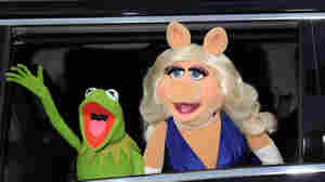 Top 10 Muppets, As Voted By Listeners
