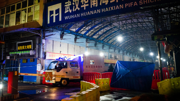 When COVID-19 first broke out in Wuhan, scientists tracked a large number of the cases to the Huanan Seafood Market in Wuhan. Above: The Wuhan Hygiene Emergency Response Team departs the market on Jan. 11, 2020, after it had been shut down to prevent the spread of the coronavirus.
