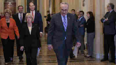 Democrats Used To Run From Big Government Label; They're Now Embracing It