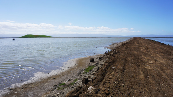 Newly deposited dirt sits on top of a levee at the Eden Landing Ecological Reserve that protects the eastern edge of San Francisco Bay.