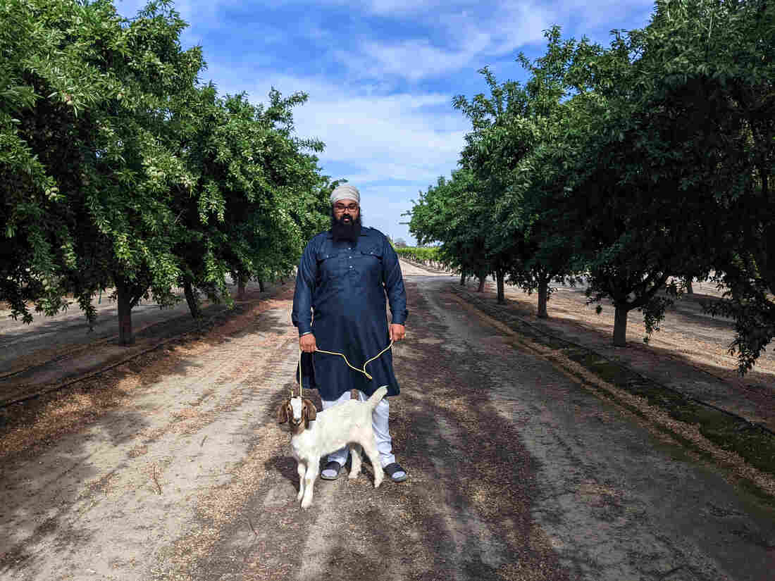 For Calif. Sikh Farmers, India Protests Cast 'Dark Cloud' Over Vaisakhi Festival