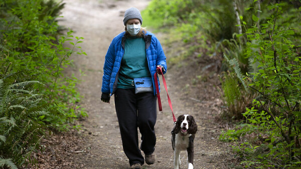 mask-wearing dog walker photo