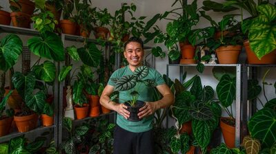 Food And Plants: Conversations About How We Cope
