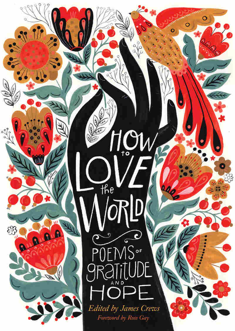 How to Love the World, edited by James Crews