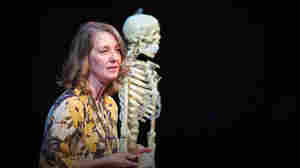 Carolyn Freiwald: What Can Our Teeth Tell Us About Where We Come From?