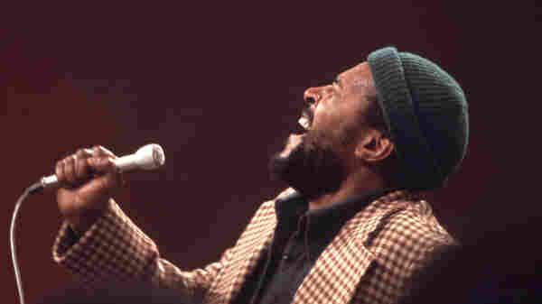 """Marvin Gaye's hit record """"What's Going On"""" encapsulates the political turmoil of 1971 while also inspiring hope for change."""