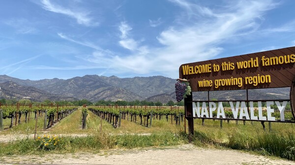 Wildfire-scarred hills are visible behind the famous sign welcoming visitors to Napa Valley.