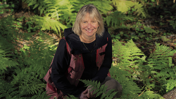 Suzanne Simard is a professor of forest ecology at the University of British Columbia. Her own medical journey inspired her recent research into, among other things, the way yew trees communicate chemically with neighboring trees for their mutual defense.