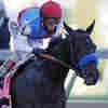 Kentucky Derby Winner Fails Drug Test, Renewing Scrutiny For Trainer Bob Baffert