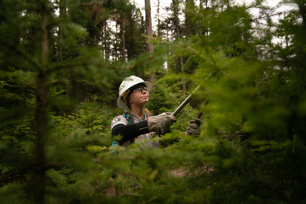 Kaile Kimball works on trails near Tally Lake with the Montana Conservation Corps.