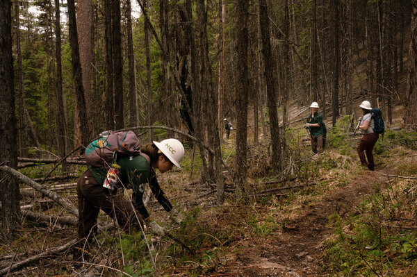 Members of the Montana Conservation Corps (MCC) work on the trails near Tally Lake in northwestern Montana. President Biden wants to retool and relaunch one of the country's most celebrated government programs: the Civilian Conservation Corps. MCC crews are already doing some of the work envisioned in Biden's climate proposal.
