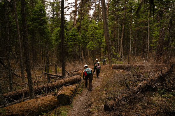 Members of the Montana Conservation Corps work on trails near Tally Lake.