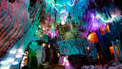 Psychedelic Art Installation Meow Wolf Isn't Coming To Fort Totten After All