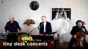 Laurie Anderson: Tiny Desk (Home) Concert