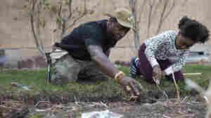 Black Entrepreneurs Sow Seeds Of Healthier Eating During Pandemic Gardening Boom