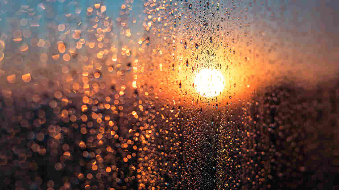 A wet window with condensation set against the sun's glow