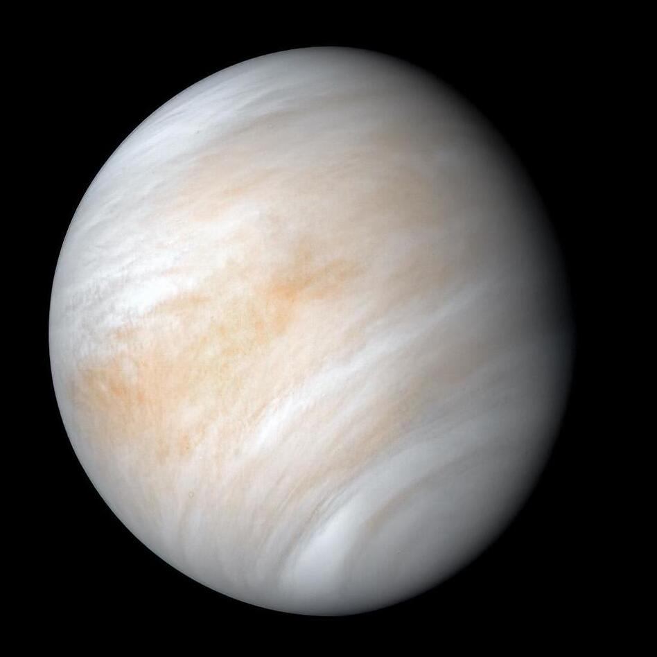 An image of Venus taken by NASA's Mariner 10 spacecraft as it sped past the planet in February 1974. NASA has decided to send two new probes to explore Venus. (NASA)