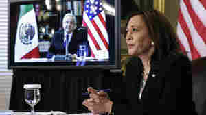 Here's What Harris Will Do On Her 1st VP Trip To Guatemala And Mexico