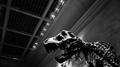 A D.C. Library Is Holding A Dinosaur-Roaring Contest — And Yes, Adults Can Partake