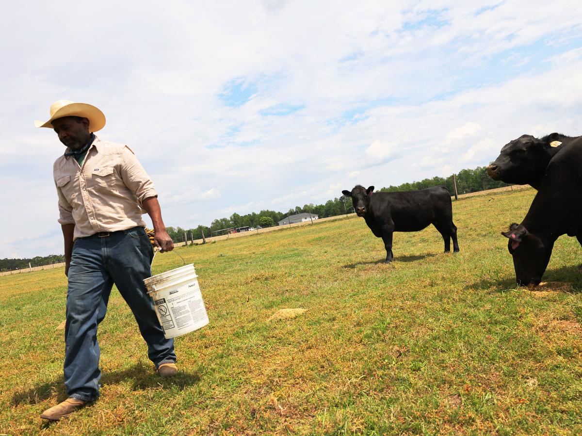 US farmer of color loan forgiveness program suspended: NPR