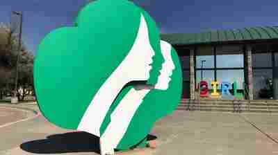 The Girl Scouts Have Unsold Cookies Left. 15 Million Boxes!