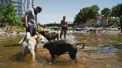 Doctors Warn Of Burns From Asphalt As A Record-Breaking Heat Wave Envelops The West