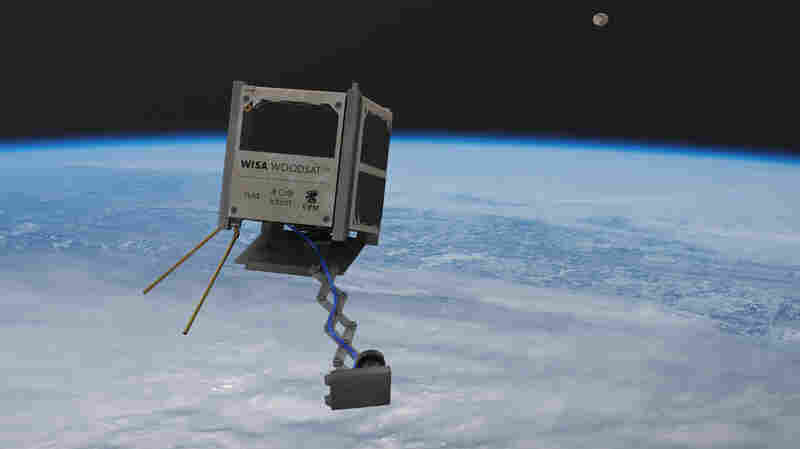 Where No Plywood Has Gone Before: A Space Agency Will Launch A Tiny, Wooden Satellite