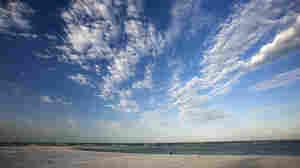 Bluer Skies Ahead