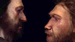 To Keep Your Brain Young, Take Some Tips From Our Earliest Ancestors