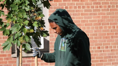 D.C. Gets High Marks For Tree Equity — A 'National Success Story'