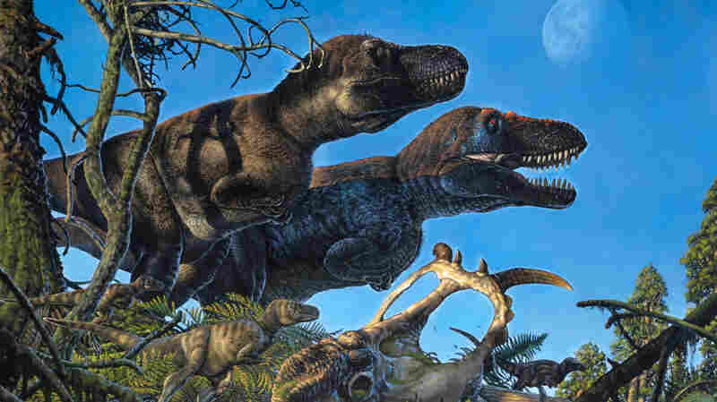 A New Study Suggests Dinosaurs Might Not Have Been As Cold-Blooded As We Thought