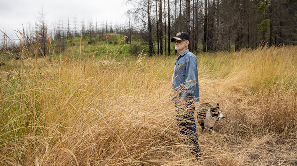 Francis Dairy examines the damage on the property near the home he shared with his wife, Brenda Dairy, in Gates, Ore. The home was destroyed by the Beachie Creek Fire in 2020.