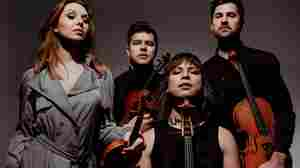 From Haydn To Flying Lotus, Attacca Quartet Embraces Music Non-Stop